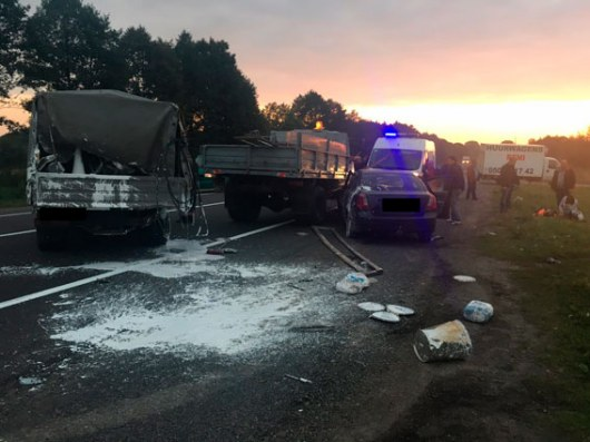 ВоЛьвовской области врезультате наезда накоммунальщиков погибли 2 человека